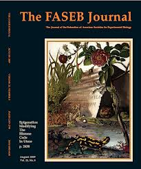 The-FASEB-Journal